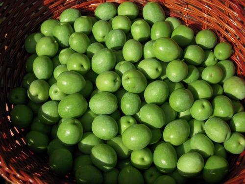 2012-10-08 マンモス2収穫 002-1.jpg