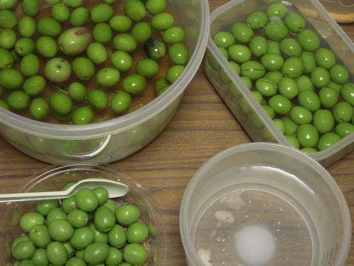 2012-10-08 マンモス2収穫 015-1.jpg