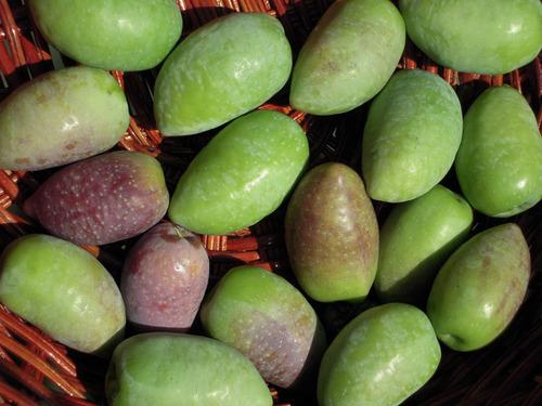 2012-10-21 2012収穫2 014-1.jpg